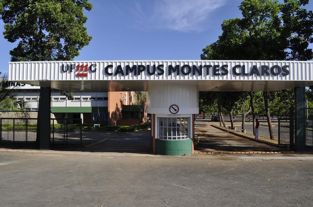 UFMG - Instituto de Ciências Agrárias da Universidade Federal de Minas Gerais